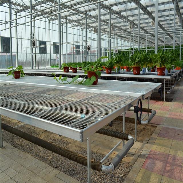 Sera bitkisi kreş ekipmanları hareketli büyümek masa fidesi haddeleme banklar