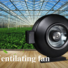 Best Oscillating Greenhouse Circulation Fans Best Oscillating Quietest Inline Roll Up Sides Greenhouse Intake Fan For Grow Tent Grow Room