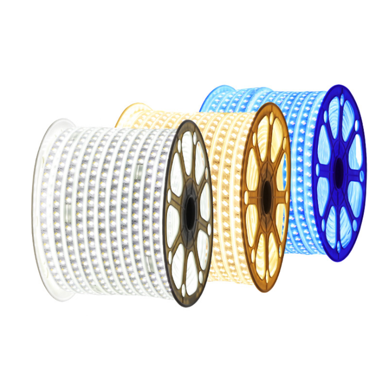 Duramp high power 220V SMD2835 5050 waterproof IP65 100M/Roll RGB indoor and outdoor flexible led strip lights
