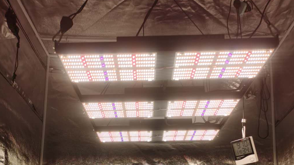 Bava Samsung 720W LED Grow Light uv ir Bulb Full Spectrum Hydroponic Bar Indoor 1000 Watt 1000w Cob Full Spectrum LED Grow Light