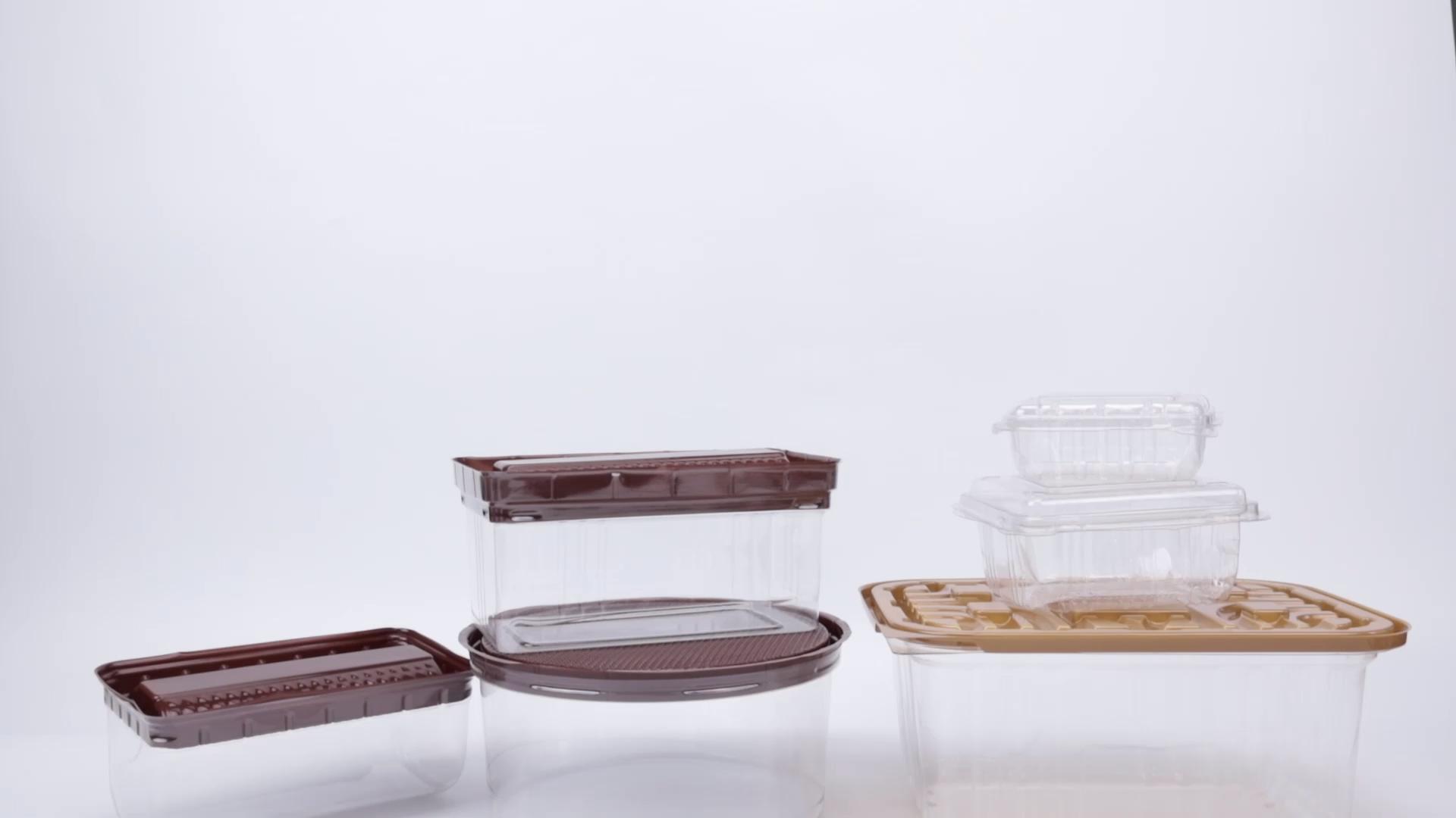 Qualité alimentaire En Plastique Transparent boîte de Nourriture Congelée Jetable Plateau À Gâteaux