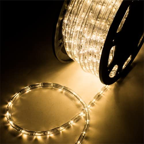 Led Rope Light Outdoor 100m 50 Meter Promotional plastic external led rope light lamp 120V ETL listed