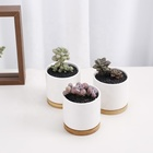 Pot Ceramic Pots Ceramicporcelain Indoor Ceramic Plant Pot Wholesale Cheap China Indoor Small Plant Pot Ceramic Succulent Plant Pots For Plants