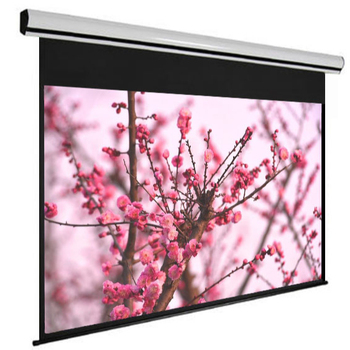 "Future Screens 120"" 16:9 Wall Mount Electric Remote Control Projection Screen With Housing Case Be Popular"
