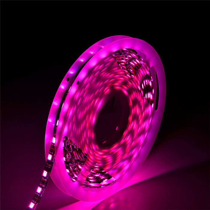 2020 hot sale color box led strip light 5050 rgb set 3.6W/m 5m/ reel