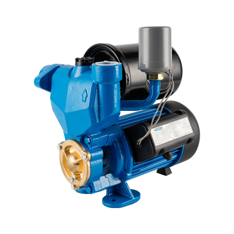 JPM self-priming peripheral pump