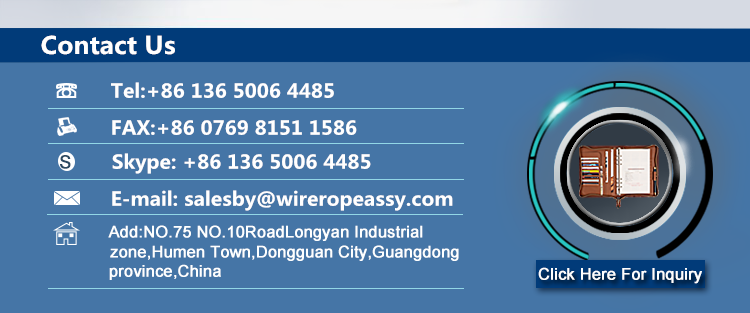 Iron Galvanized Steel Wire Rope Rings