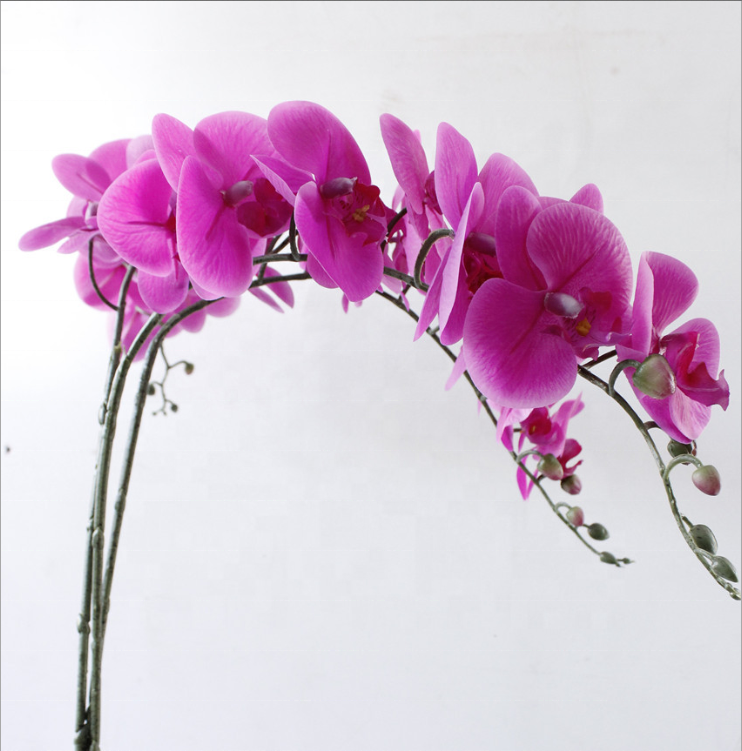 Real touch home dekoration farbecht künstliche orchidee blume