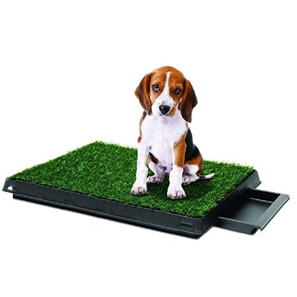 Hot selling Pet Supply Dog Pee Potty Pad, Bathroom Tinkle Artificial Grass Turf, Portable Potty Trainer with drawer