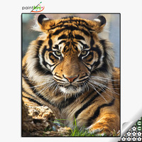 Good quality paintboy animal DIY diamond painting by numbers for adults