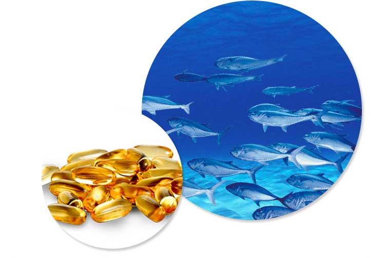 Best dietary supplements omega 3 fish oil softgel capsule