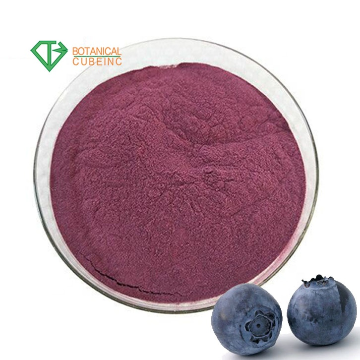 Food Additives Bulk Strawberry Fruit Juice Powder Drink Strawberry Powder China