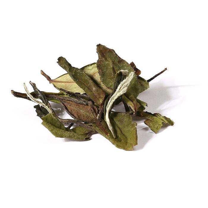 Chinese Bulk Wholesale Organic certified Premium Bai Mu Dan White Peony Tea - 4uTea   4uTea.com