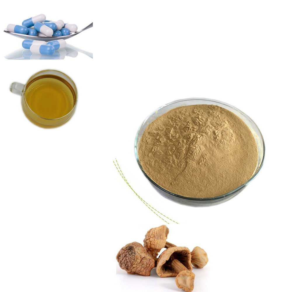 Organic agaricus blazei mushroom extract 10:1 20:1 for Anti-cancer