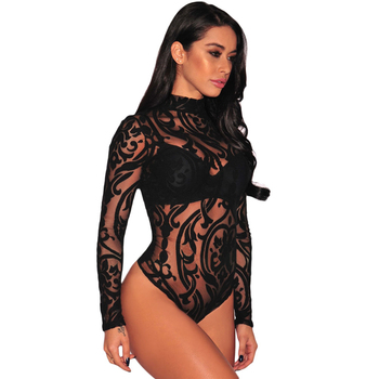 Black Sheer Long Sleeve Mesh Geometric Velvet Women Sexy Lingerie Bodysuit