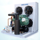 R404a Bitzer compressor air cooled condensing unit for cold freezer room
