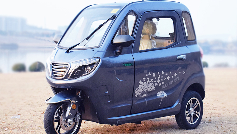 Enclosed Cabin Scooter 3 Wheel Car for Passenger With EU Homologation