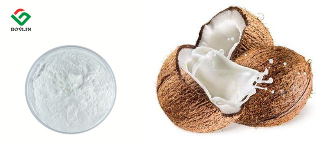 Low Price and Organic Dried Coconut Milk Powder