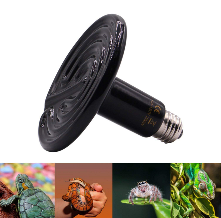 Reptile lamp ceramic heating lamp for warming cone reptile camera heater