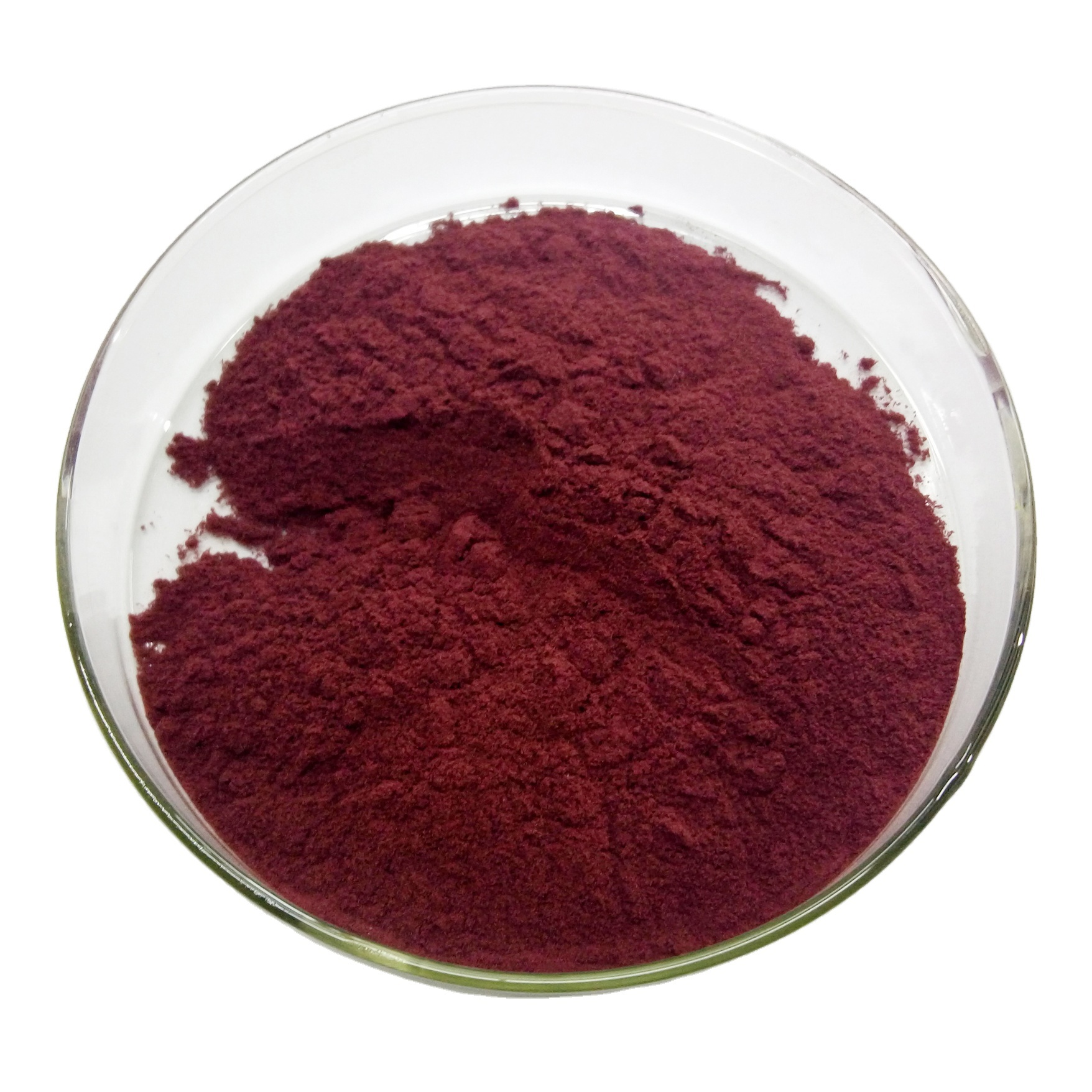 SOST Biotech Chinese Supplier 25% Anthocyanindins Bilberry Fruit Extract