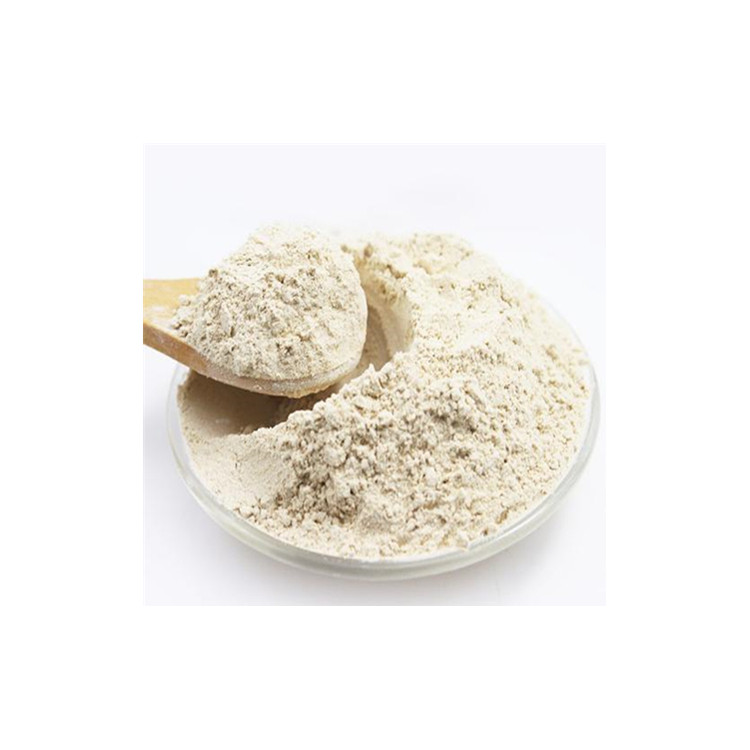 Whosale Price Pure Powder Garcinia Cambogia Extract Buy