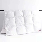 comfortable cotton percale duvet cover Anti-bacterialCopper infused Quilt with CE certificate