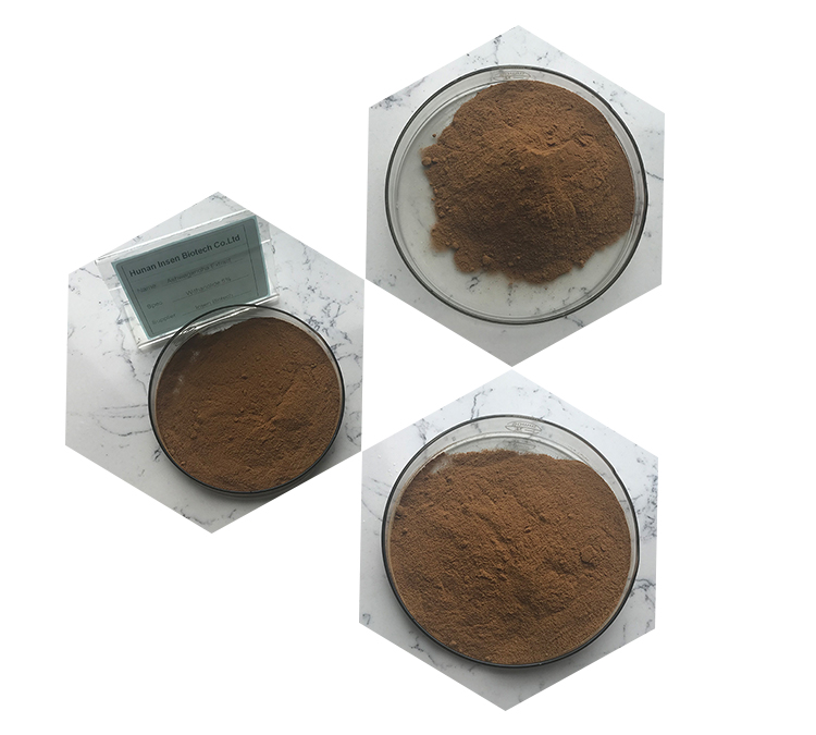 Natural Ashwagandha Extract, Withanolides, Ashwagandha Root Extract