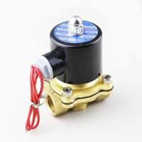 2W160-15 Valvulas Solenoides 12V 110V 220 Volt 24V DC Mini Micro 1 2 Inch 2 Way Brass Air Solenoid Valve Water Normally Closed