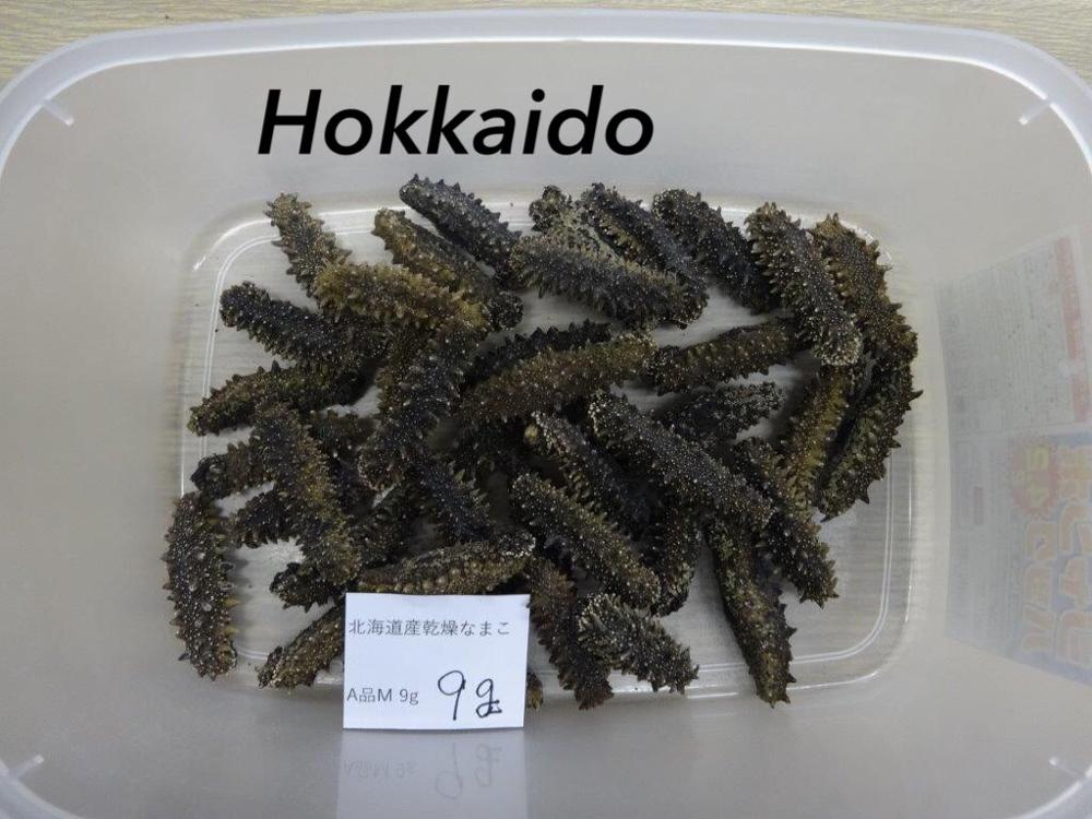 Japanese Companies Sugar-Free Dried Trepang Snack Sea Food for Sale