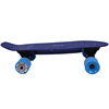 Best quality Fish board plastic electric skateboard electric