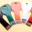 Individual Packaging Custom USB Key Thumb Drive with Logo 8GB 16GB 32GB 64GB