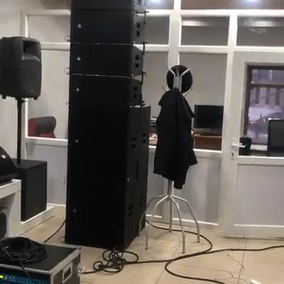 ZSOUND पेशेवर ऑडियो निष्क्रिय दोहरी 15 इंच लाइन सरणी subwoofer