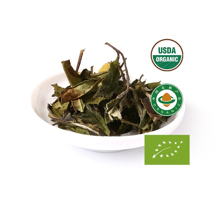 Health Tea Producer Orthodox White Tea Organic Bai Mu Dan - 4uTea   4uTea.com