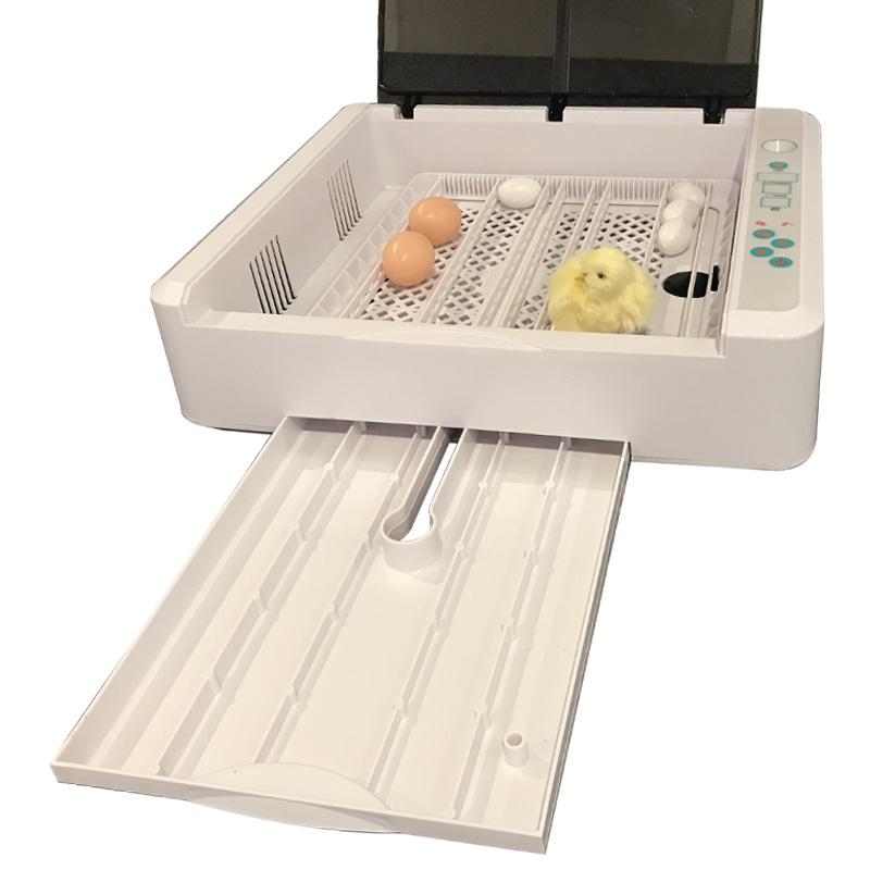HHD полностью автоматический мини инкубатор перепелиное яйцо инкубатор для продажи в ченнаи EW-36