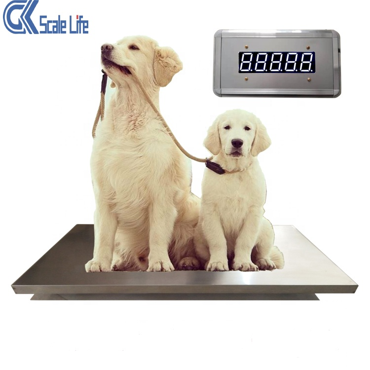 Stainless steel digital pet weighing scale veterinary scale with rubber mat