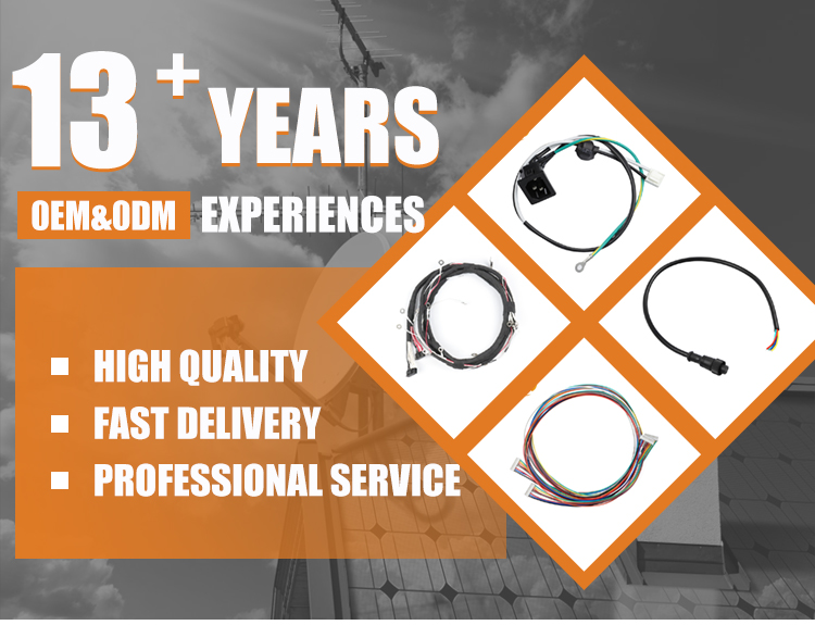 Amp/Molex/ Jst/Ket Car  20 Pin Wire Harness Automotive,OEM Auto Wire Harness Pins