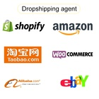 Support customization and logo different products dropshipping agent chile