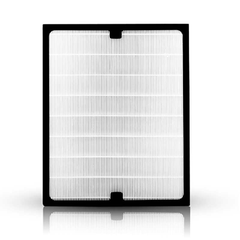 BA Classic Replacement Filter, 200/300 Series Genuine Particle Filter