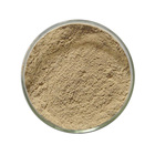 Bean Extract [ Chlorogenic Acid ] Chlorogenic Acid High Quality Green Coffee Bean Extract Powder 40% Chlorogenic Acid HPLC