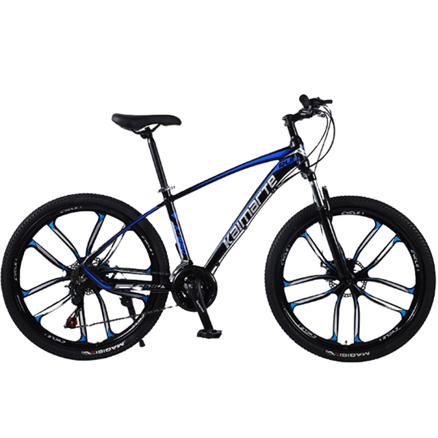 China cheapest High carbon steel Mountain bike with Spoke wheel Three six ten wheel folding bicycle