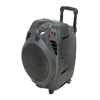 Sound System Audio Equipment Rechargeable Trolley Portable Speaker Outdoor Speaker car amplifier speaker 5000w car stereo
