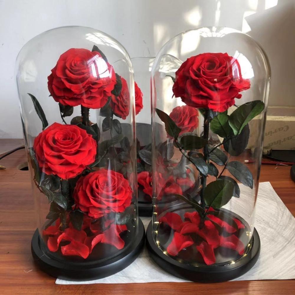 хотите розы под куполом картинки особенно праздники, так