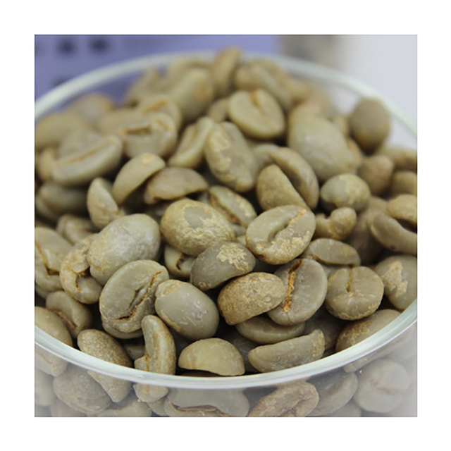 Yunnan Arabica Green Coffee Beans with Nice Prices Quality coffee beans