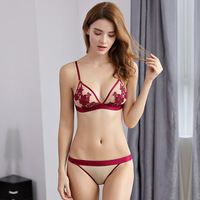Sexy Lace Lingerie Ultra-thin Bralette Set Triangle Bra Set Embroidery Transparent Bra Panty Set for Girls Ladies Woman