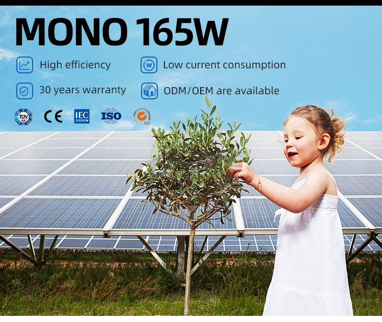 Manufacture price 165w solar panel 36 cell	solar panel sun power