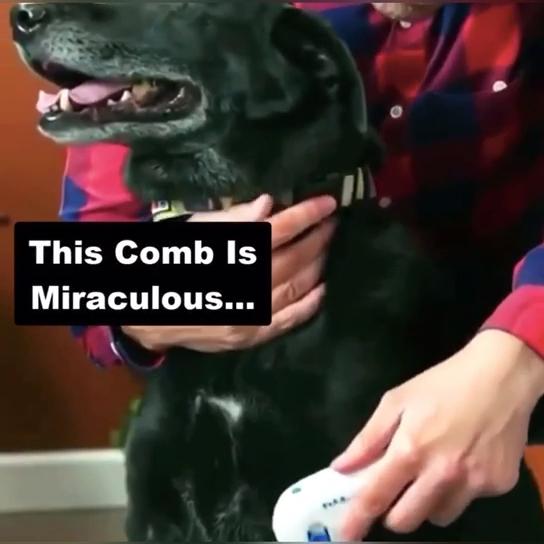 Electric Pet Lice Cleaner Comb Kills Fleas Dog Cat Flea Cleaning Brush
