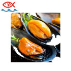 Frozen half shell mussel mussel meat whole shell mussel