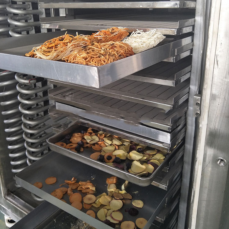 Herb Dates Food drying machine / freeze dryer vacuum freeze drying equipment dry fruit machine  freeze dry machine