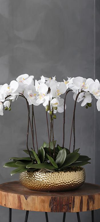 3 6 فرع أبيض قوارير وعاء نبات أوراق الحرير وهمية الزهور السحلية للبيع اللاتكس الاصطناعي