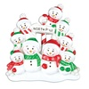handmade custom personalized christmas ornaments resin mini snowman 9 family ornaments